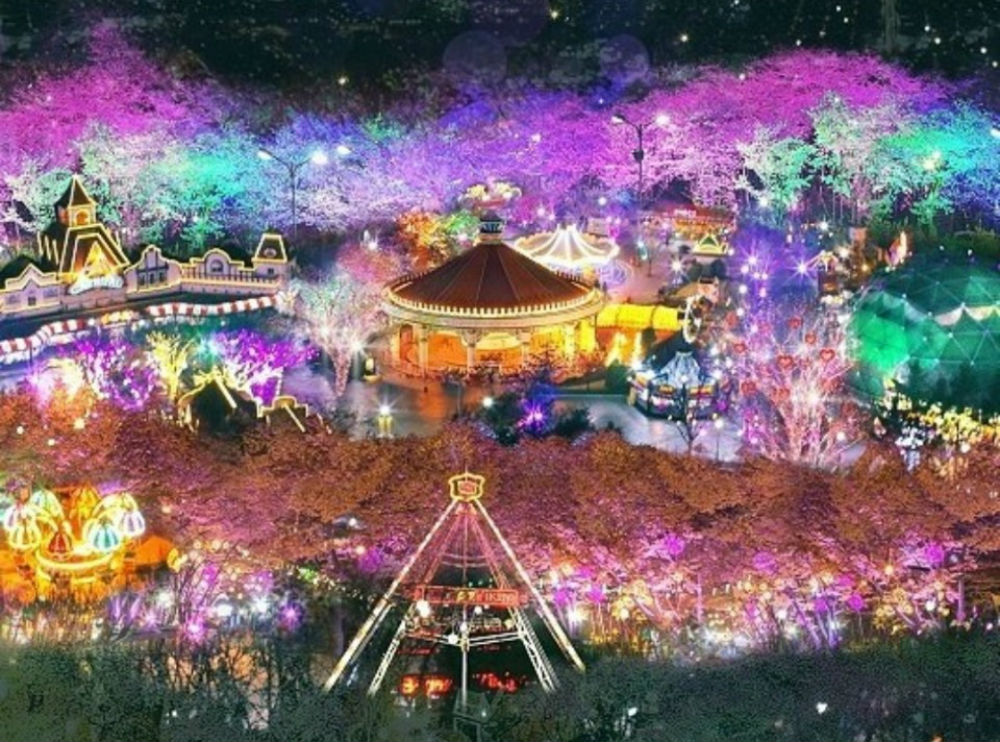 (봄) 대구이월드 야간 벚꽃투어 - 부산출발