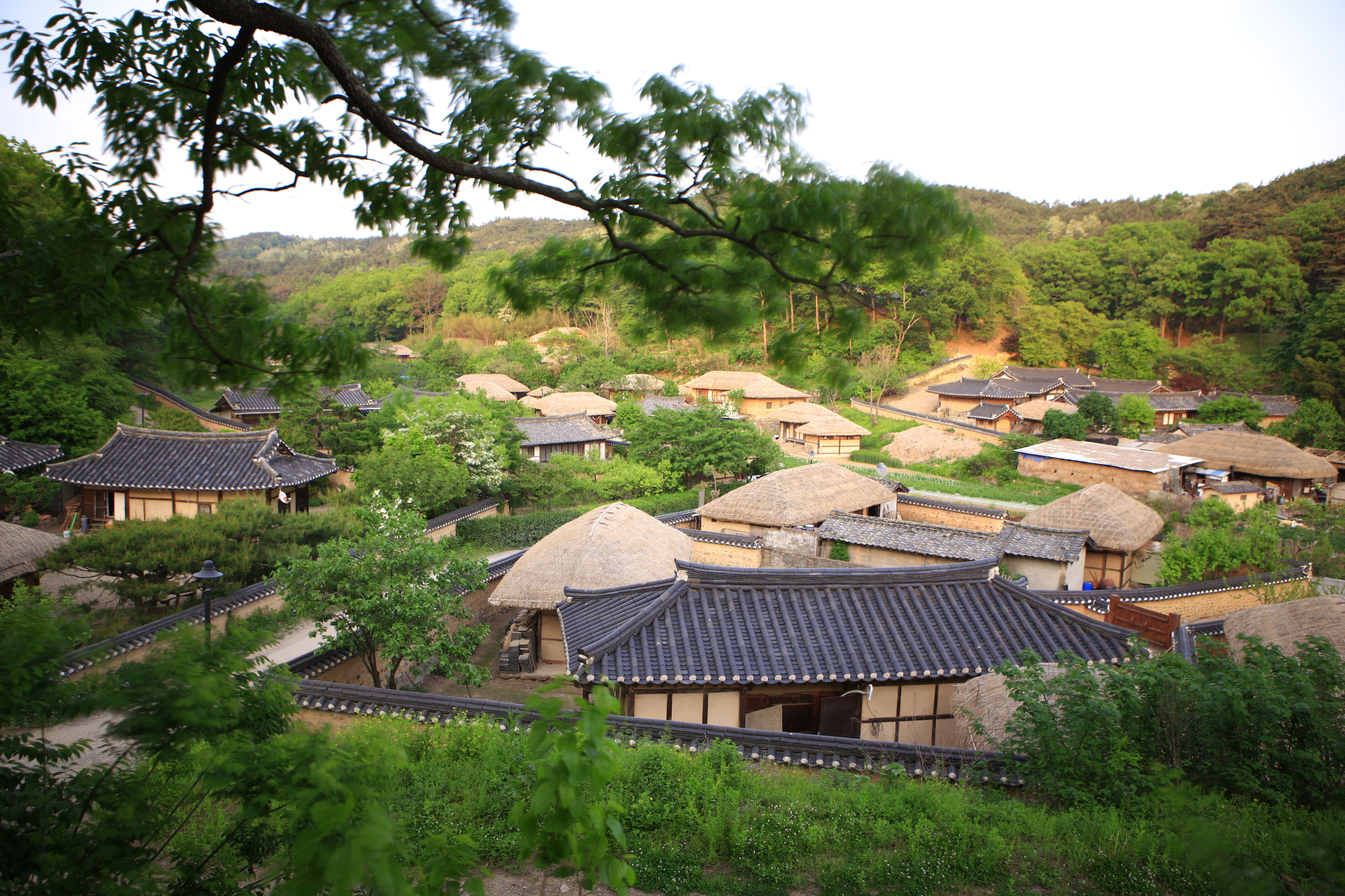 (Oct - Mar) Gyeongju UNESCO World Heritage One Day Tour - Depart from Busan