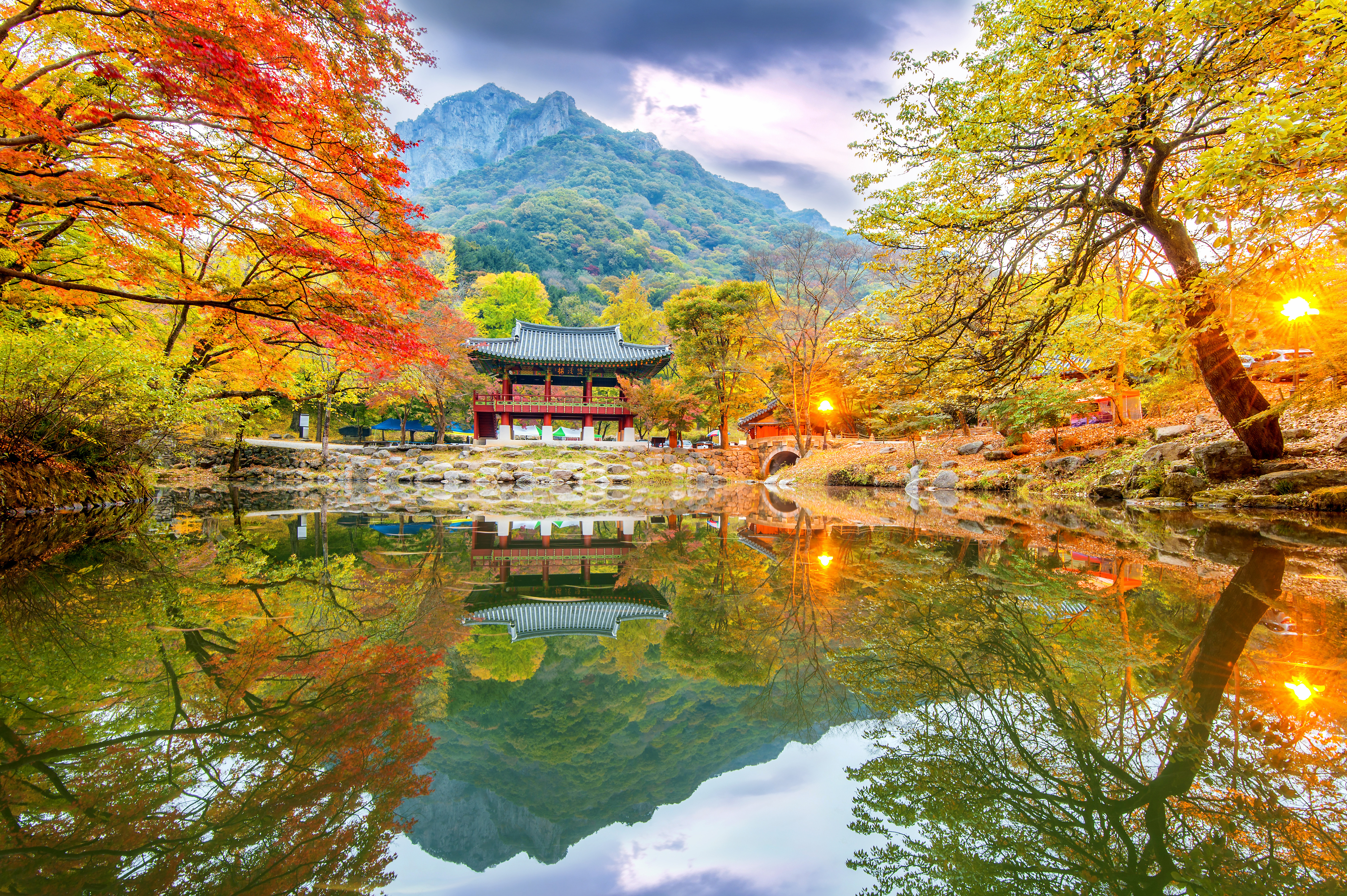 (Autumn) Magnificent Naejangsan National Park Foliage One Day Tour - Depart from Busan