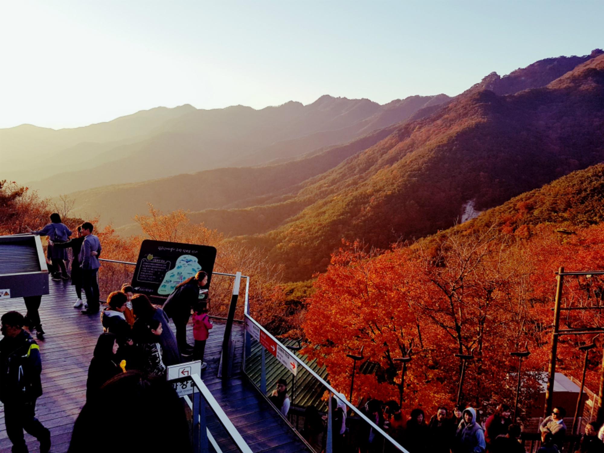 (秋季) 八公山自然公園賞楓一日遊