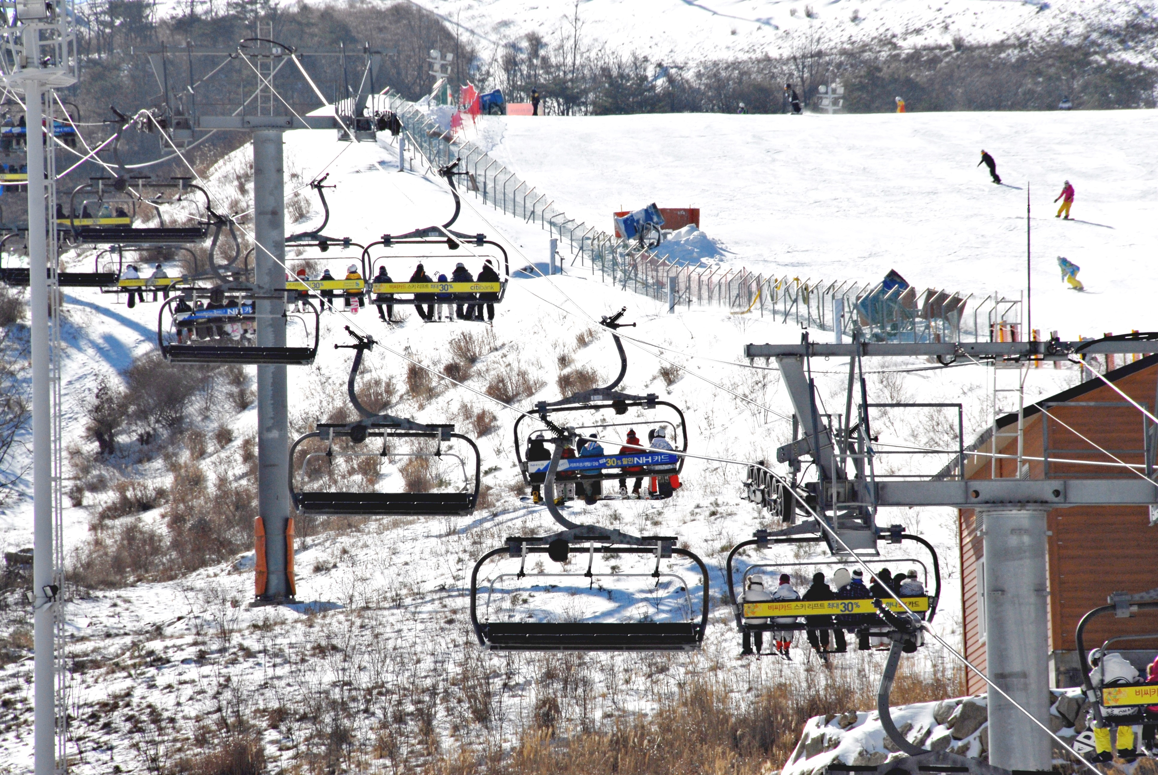 (Winter) Eden Valley Ski Resort One Day Tour - Depart from Daegu