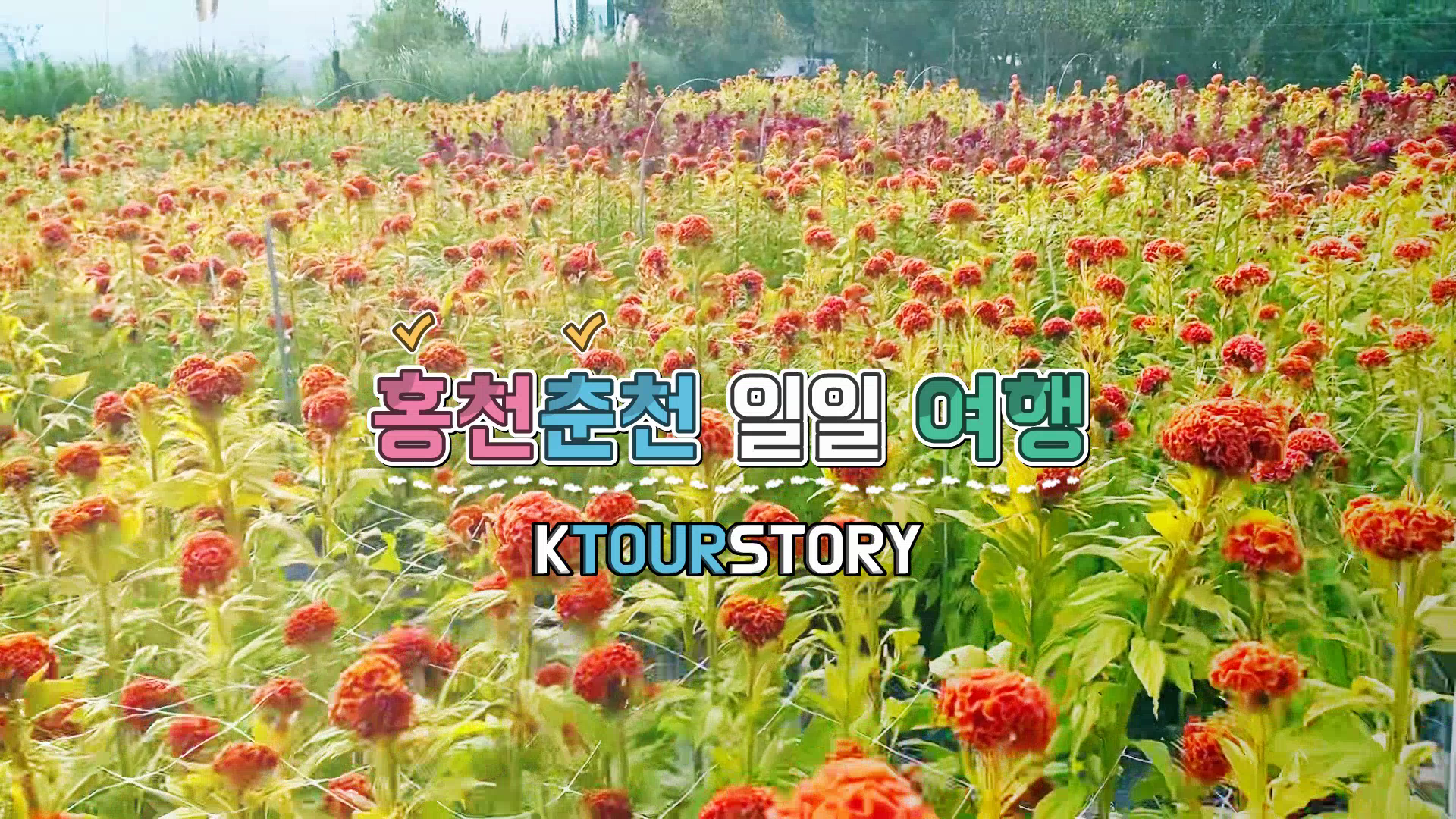 홍천춘천일일여행/ Hongcheon-Chuncheon one day tour